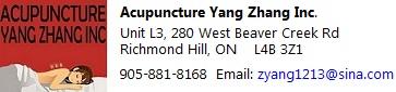 AcupunctureYang Zang